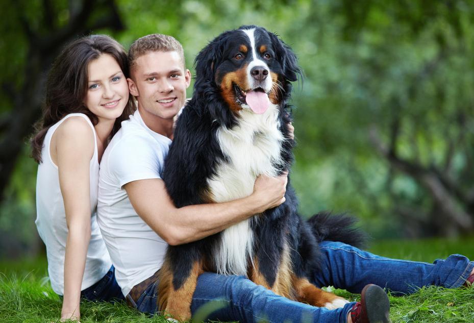 Как влюбить мужчину собаку